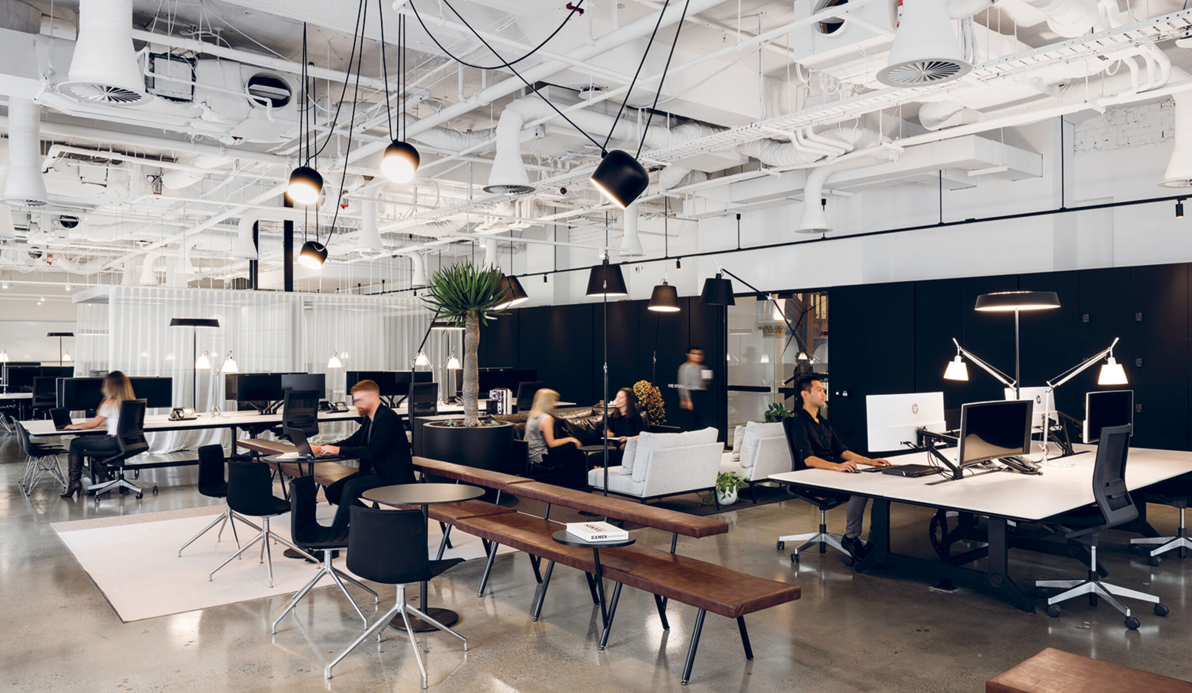 The Future of Workplace by Hoyne